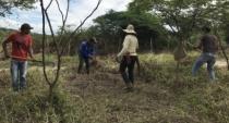 AGREGA: Conheça ações que reúnem energias alternativas e agroecologia em Pernambuco